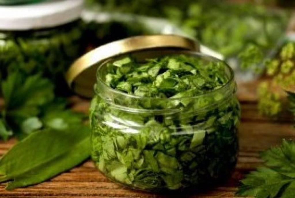 Как сохранить зеленый лук на зиму в домашних условиях — 5 простых заготовоккак заготовить зеленый лук на зиму в домашних условиях