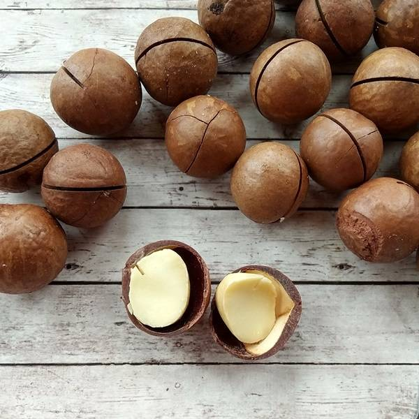 Орех макадамия: полезные свойства и противопоказания