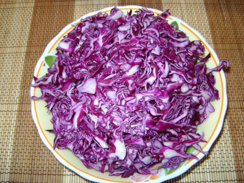 Засолка красной капусты: самые популярные рецепты заготовок на зиму, способы хранения в домашних условиях
