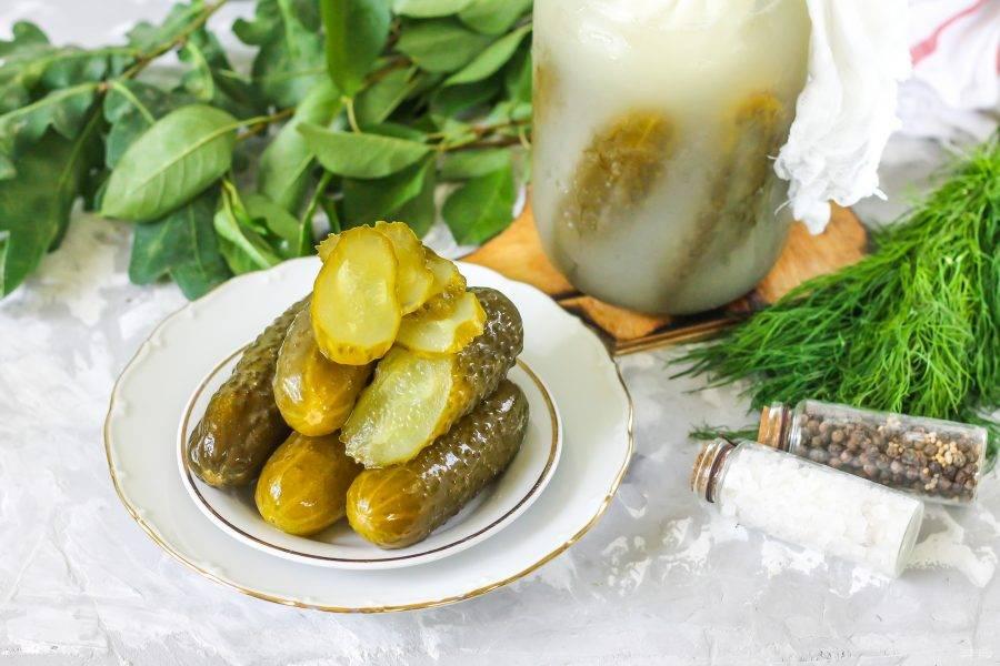 Соленые огурцы: классический рецепт приготовления