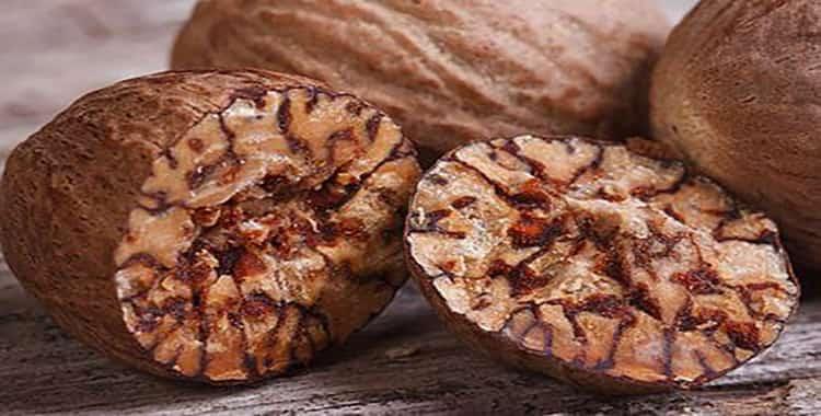 Что такое мускатный орех и как его применяют: польза и вред, влияние на человека