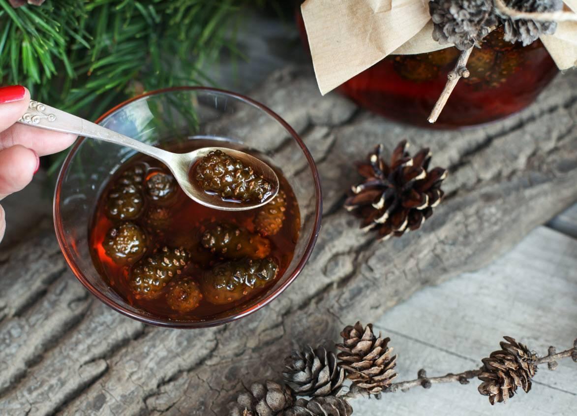 Варенье из кедровых шишек: польза, рецепты, противопоказания