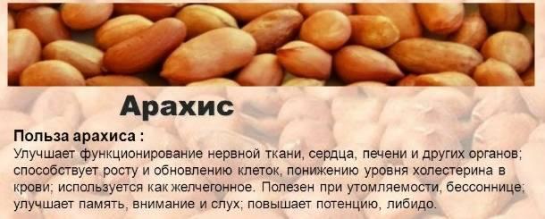 Какие орехи повышают давление: употребление при гипо и гипертонии