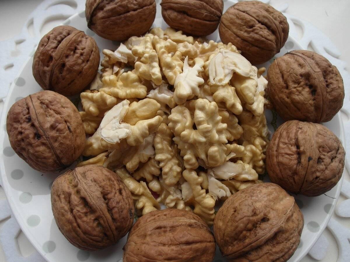 Как вырастить и ухаживать за грецким орехом. правильный уход.