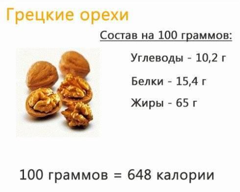 Орех пекан: польза и вред для организма, фото