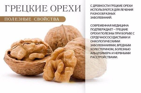 Какие орехи можно есть беременным?