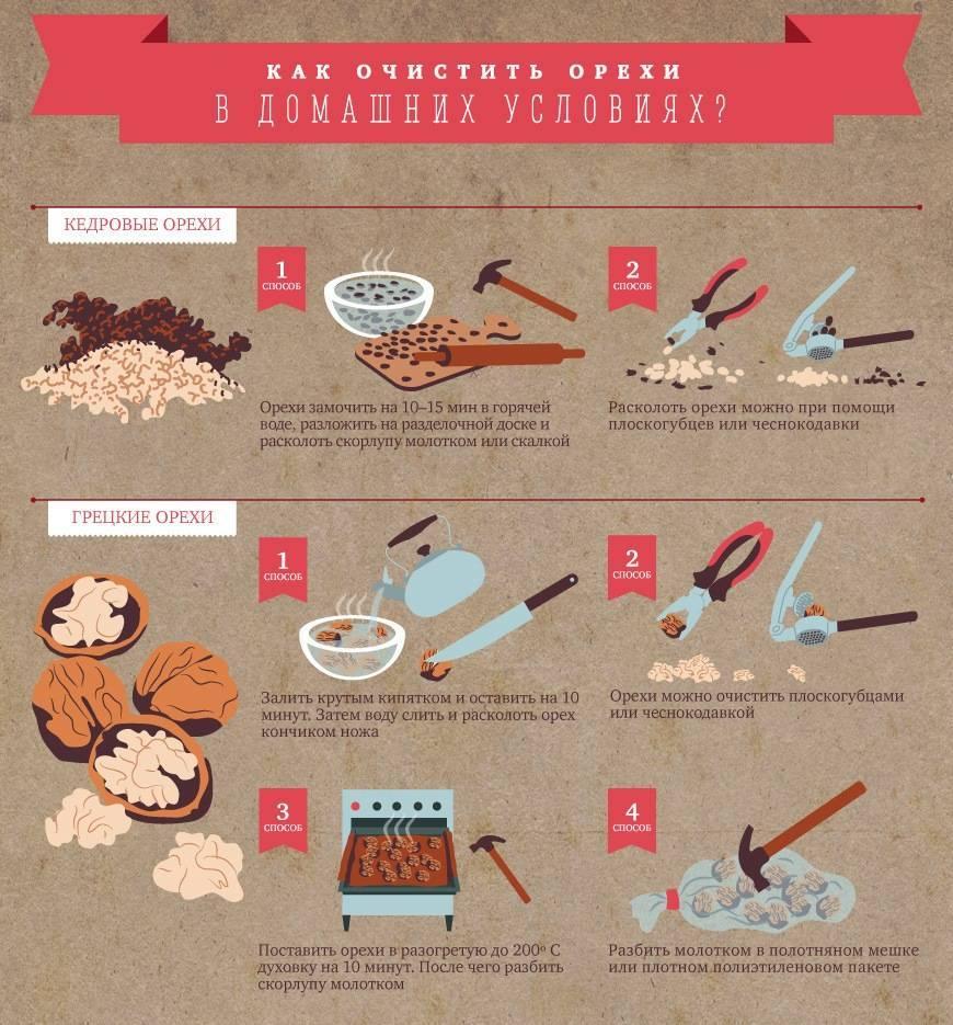 Лечебные свойства скорлупы кедрового ореха: рецепты приготовления, противопоказания, применение
