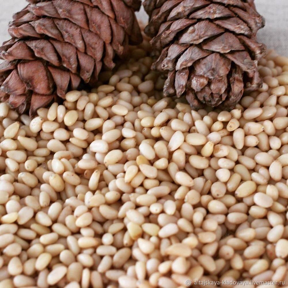 Как хранить орехи в домашних условиях: основные методы, срок годности
