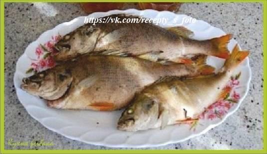 Как правильно солить речную рыбу