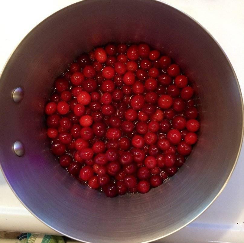 Дикорастущие ягоды (брусника и клюква)