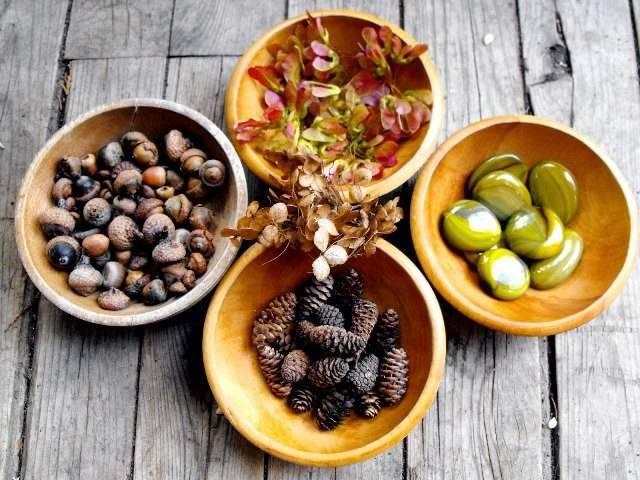 Кофейный напиток из желудей, цикория, ржи, ячменя и других растений.   родобожие
