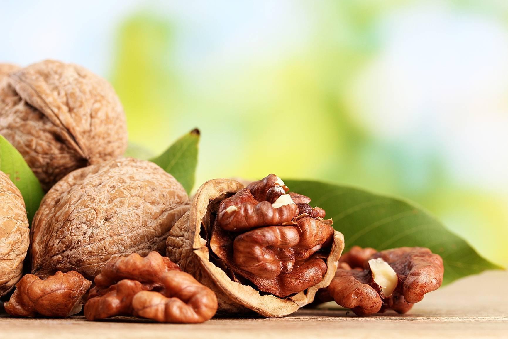 Грецкие орехи при грудном вскармливании кормящей маме (польза или вред)