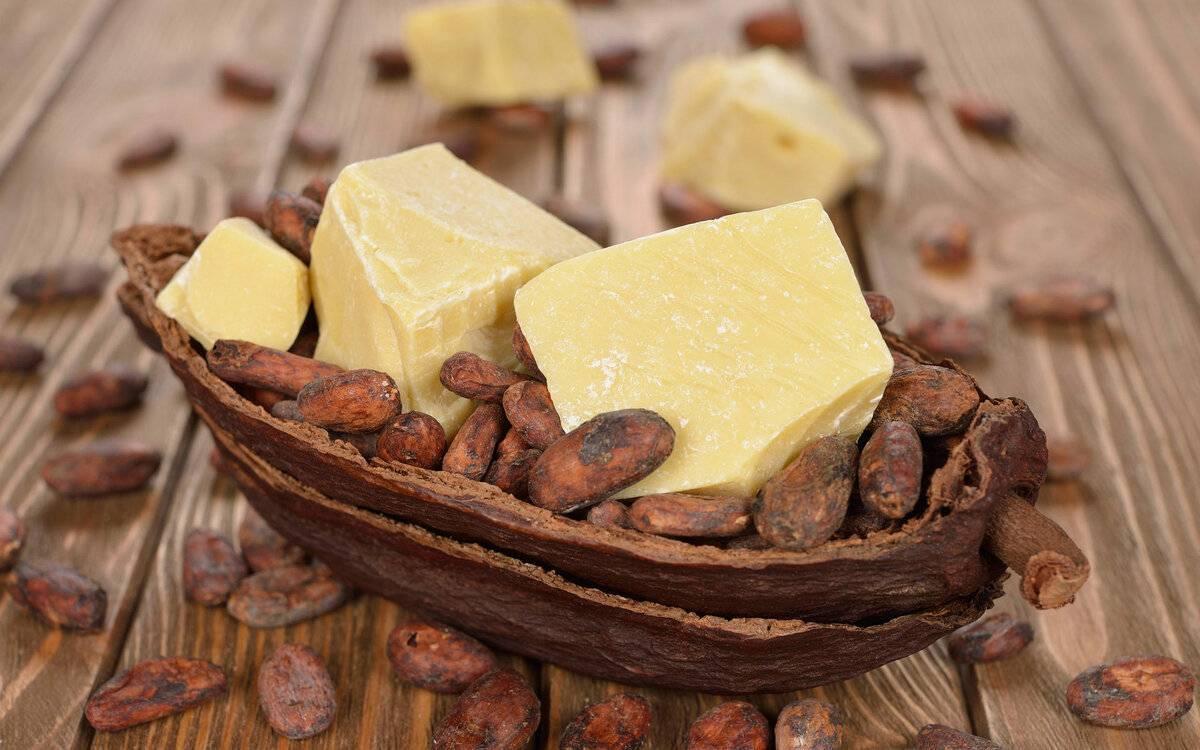 Масло какао: основные свойства, особенности и способы применения