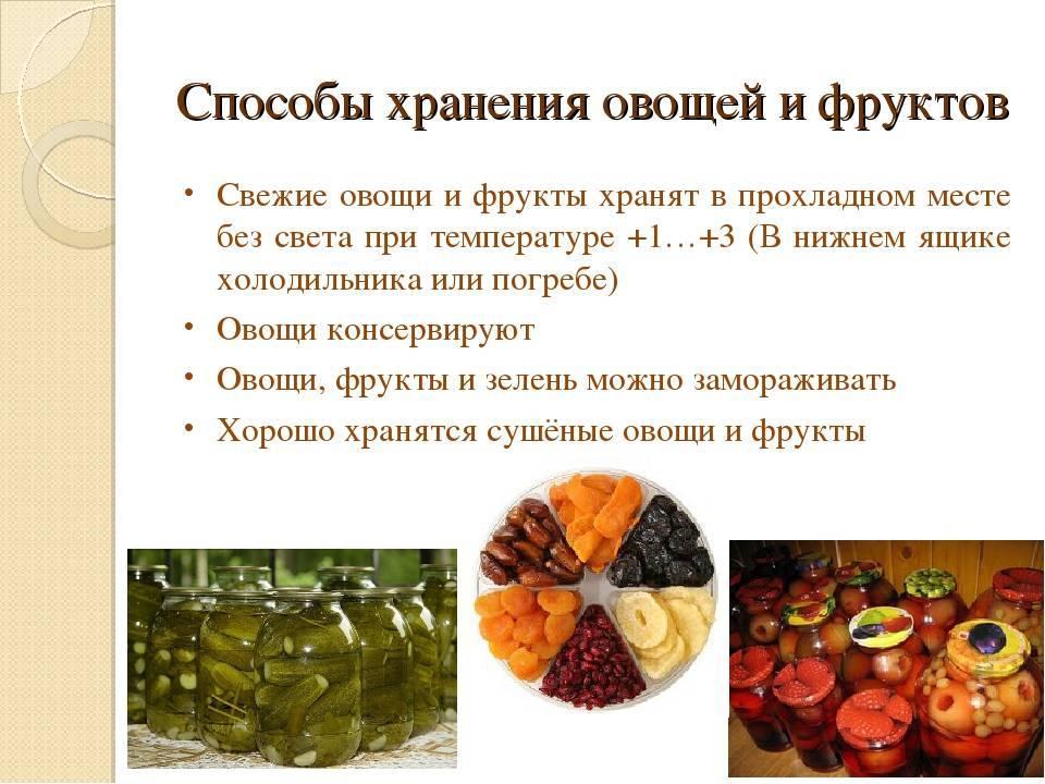 Хранение плодов (фруктов) и овощей на складе: технология, условия и требования