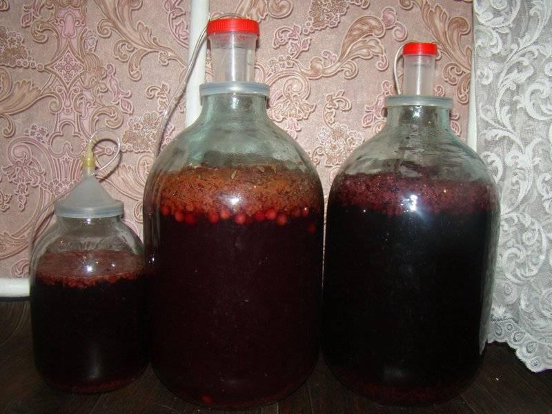 Вино из забродившего варенья - простые пошаговые рецепты для приготовления в домашних условиях