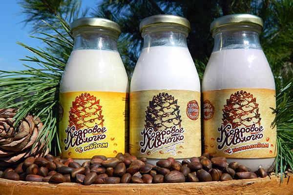 Кедровое молочко: лечебные свойства и противопоказания, рецепт