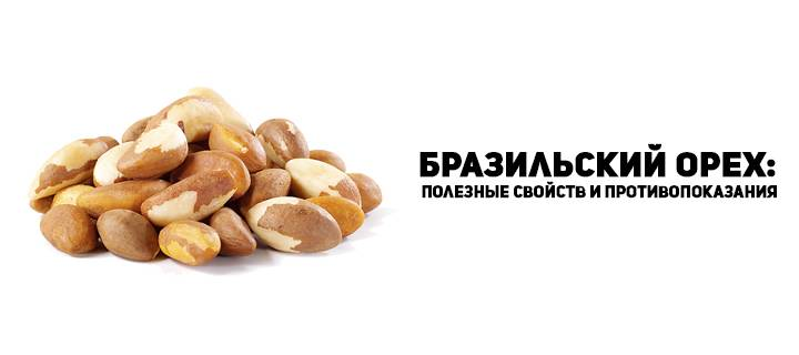 Бразильский орех польза и вред: состав, свойства и применение