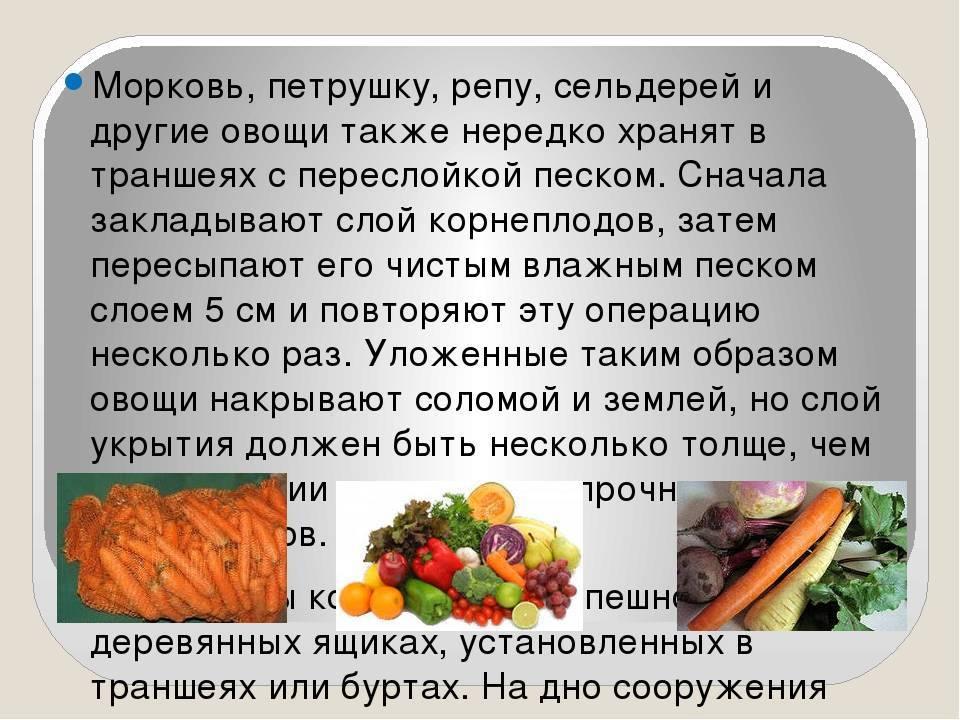 Правила хранения овощей в овощехранилищах