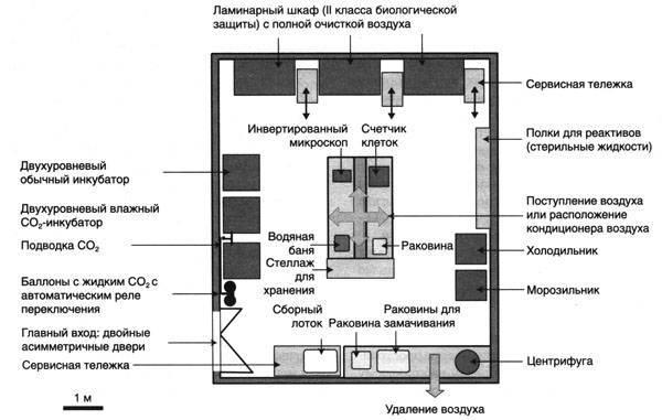 Организация и оборудование микробиологической лаборатории
