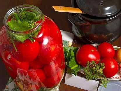 Соленые помидоры с укропом, чесноком и хреном