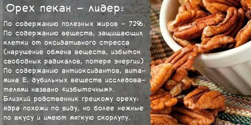 Орех пекан – польза и вред: 17 полезных свойств пекана и противопоказания