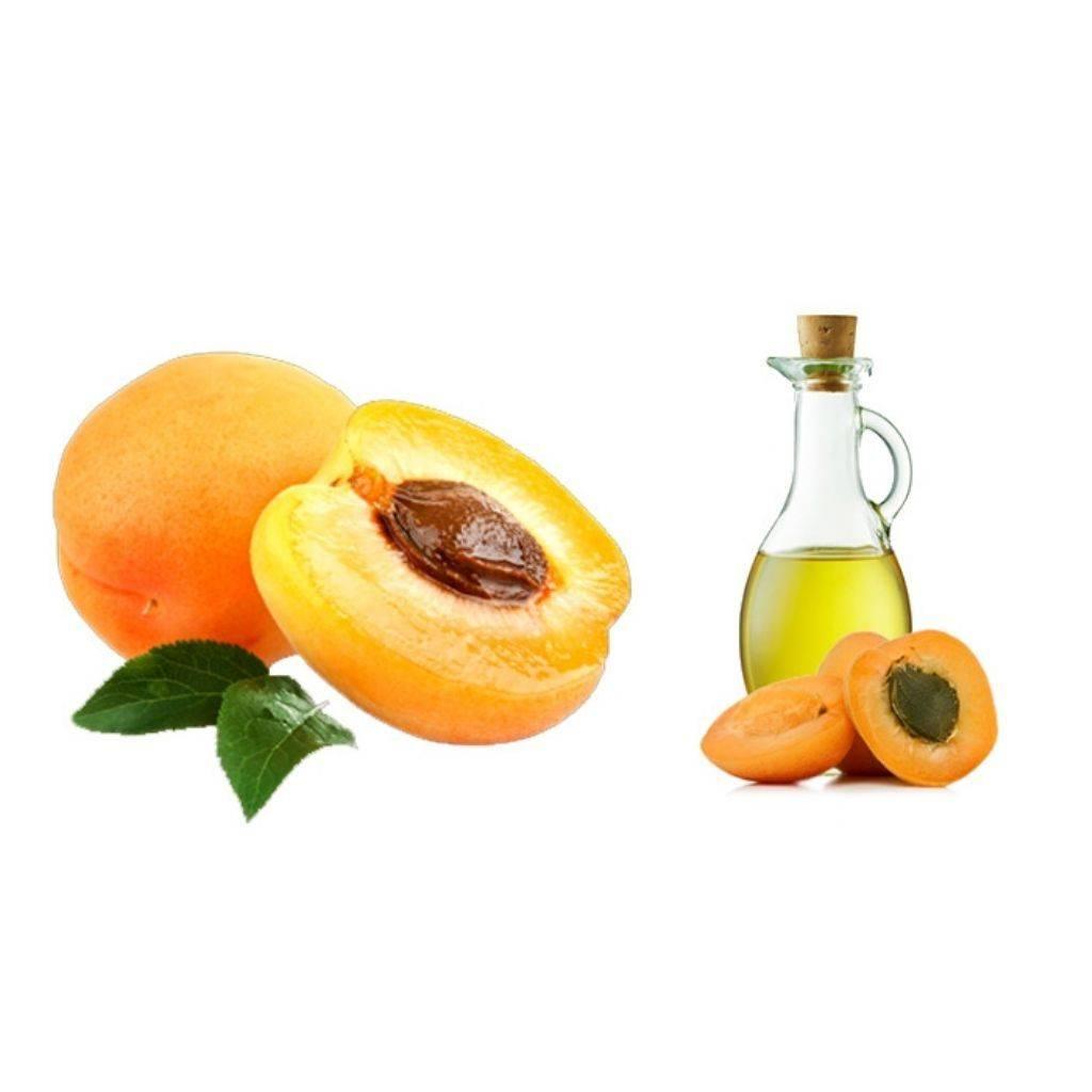 Абрикосовое масло для лица от морщин: отзывы о применении, свойства, меры предосторожности, правила использования