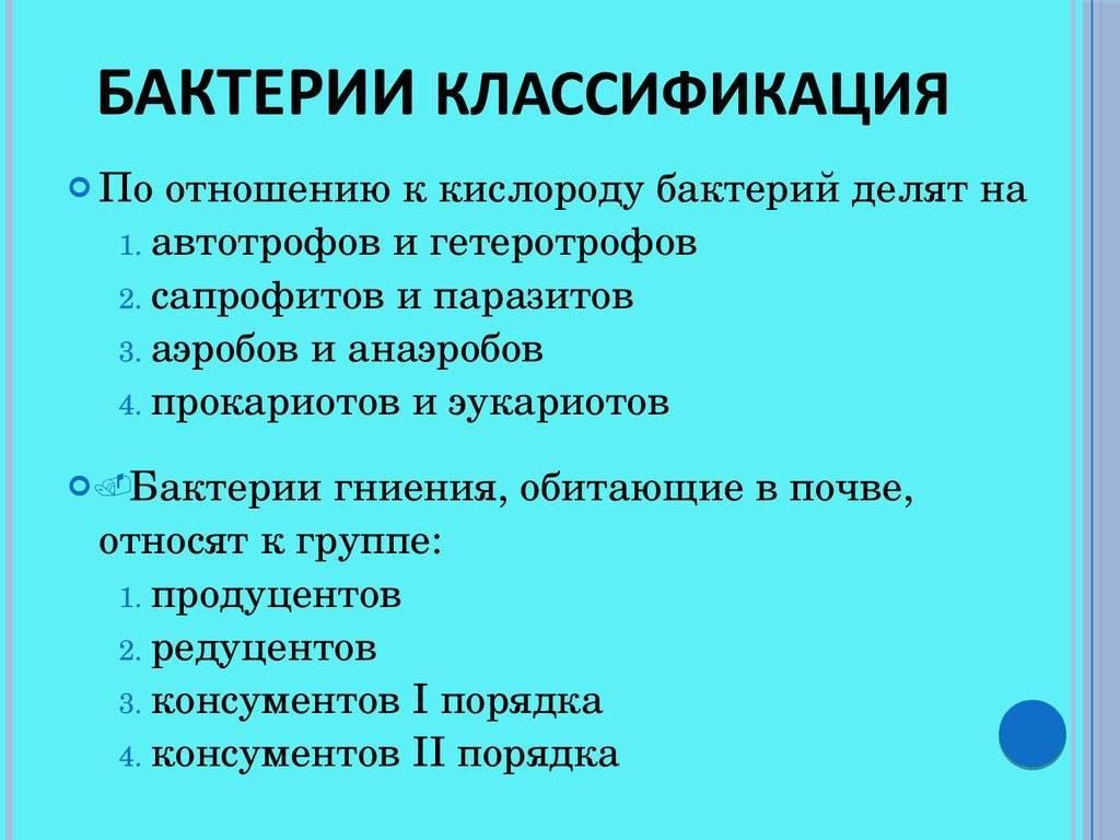 Принципы классификации микроорганизмов. основные группы микроорганизмов :: syl.ru