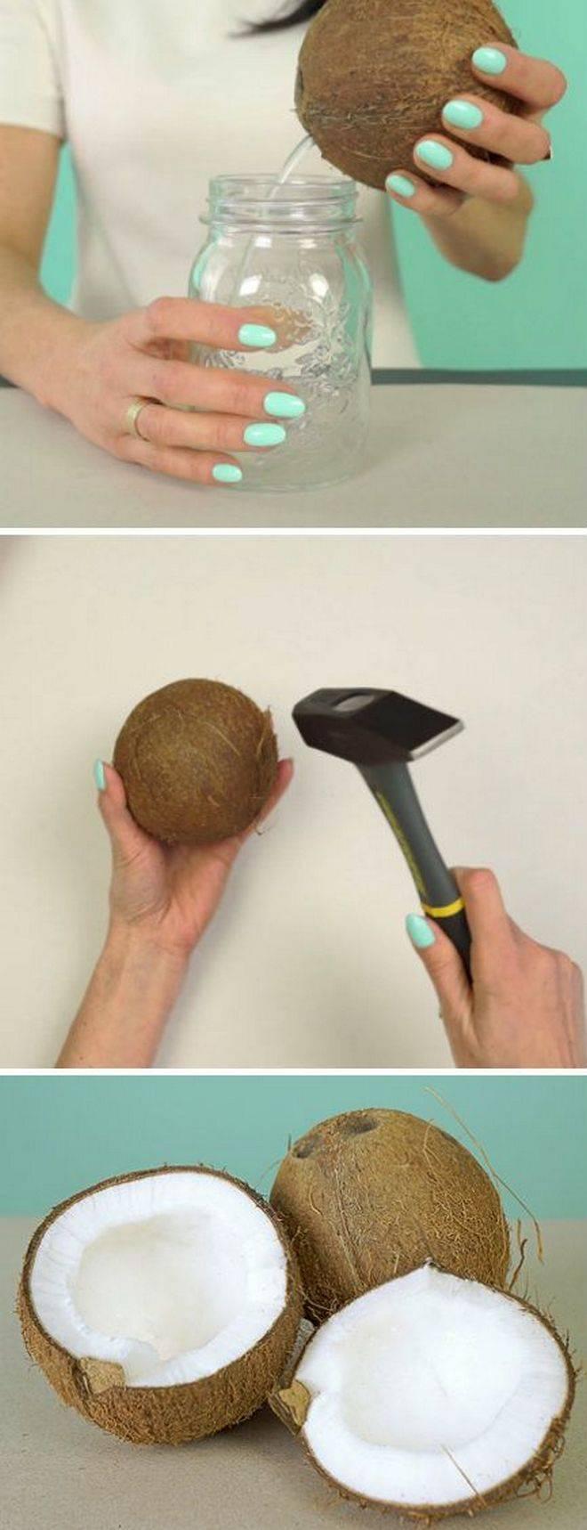 Какие бывают кокосы, сорта, разница зеленых и коричневых
