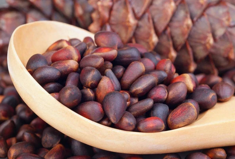 Как хранить кедровые орехи чищеными, в скорлупе, в шишках