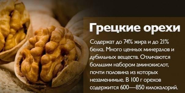 Грецкий орех: польза и вред для человека