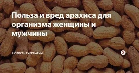 Арахис - вред и польза. полезные свойства для мужчин и женщин, противопоказания и аллергия на арахис