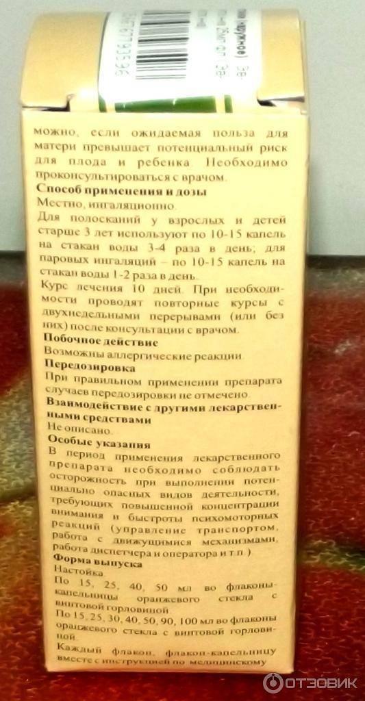 Настойка чёрного ореха – уникальное действие редкого препарата
