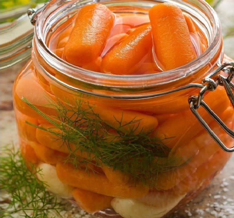 Квашеная морковь – на все случаи жизни: яркая, острая вкуснятина! рецепты квашеной моркови: с капустой, свеклой, баклажанами
