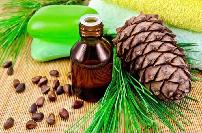 Кедровое масло: лечебные свойства, применение, противопоказания
