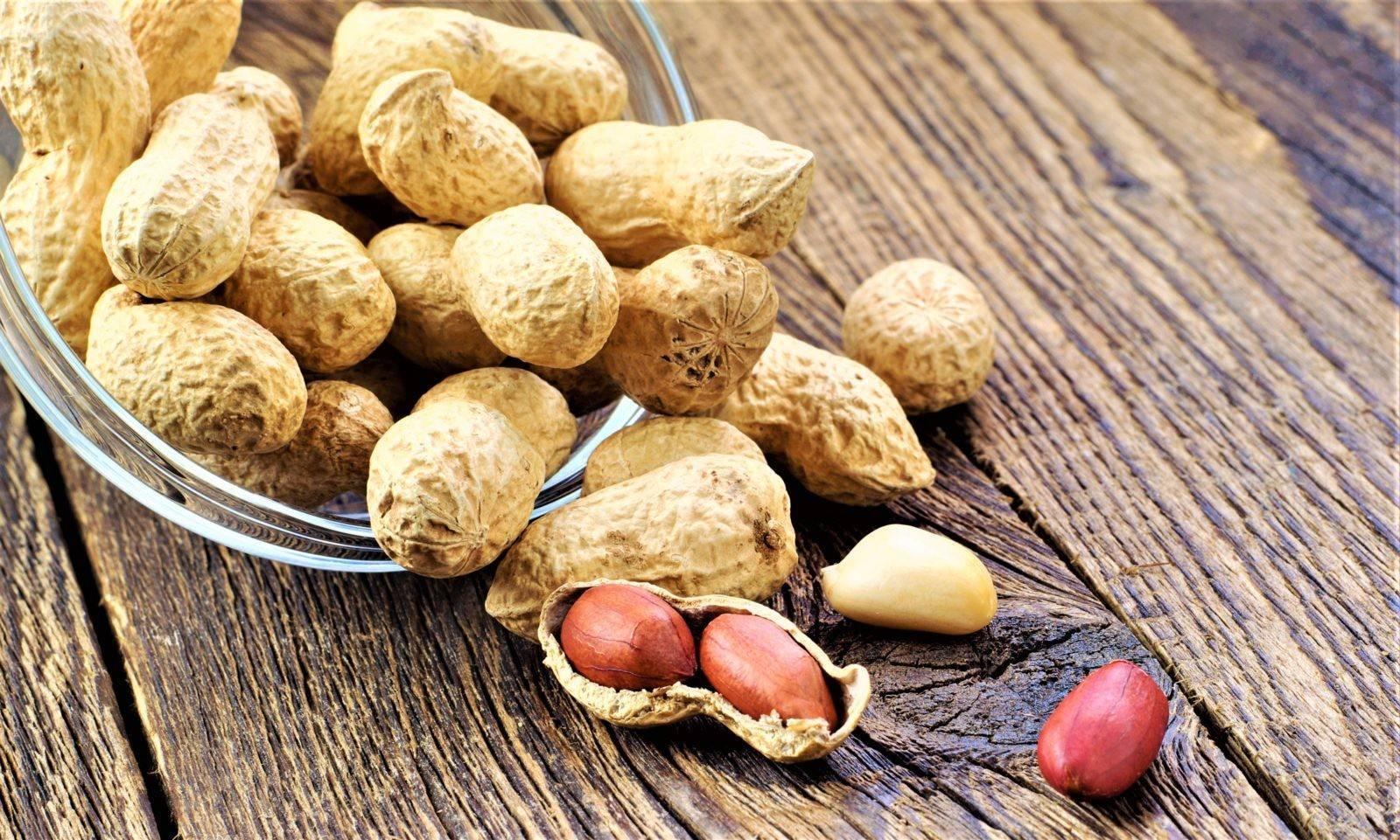 Полезные свойства и вред арахиса для мужчин и женщин