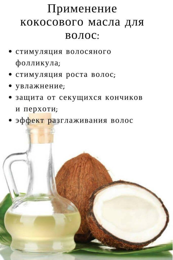 Кокос: польза и вред для человеческого организма