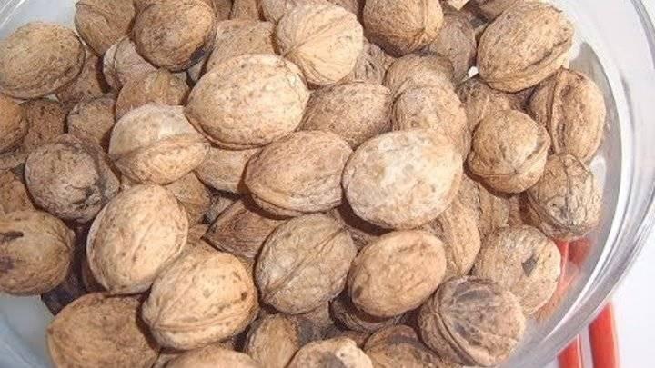 Подсушить орехи в духовке температура. как правильно сушить орехи