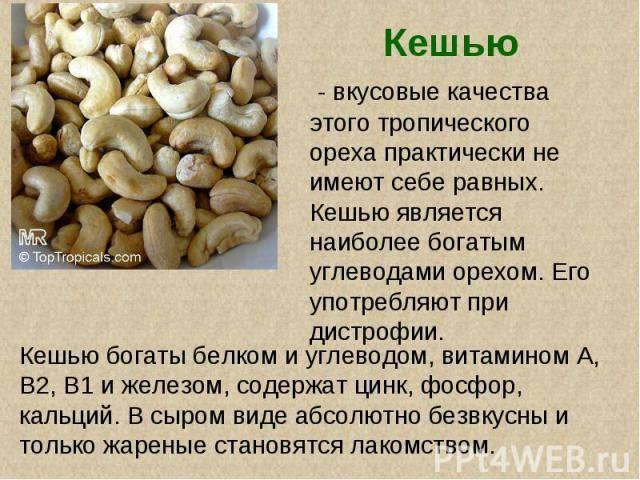 С какого возраста детям можно есть грецкие орехи, в чем их польза и как употреблять?