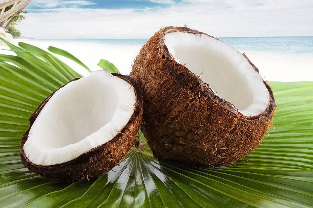 Как правильно есть кокос