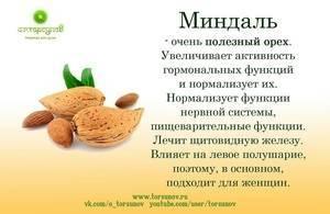 Польза и вред миндаля для женщин, его противопоказания: какова суточная доза, чем полезно для организма кушать орех до и после 50 лет, сколько можно есть в день?