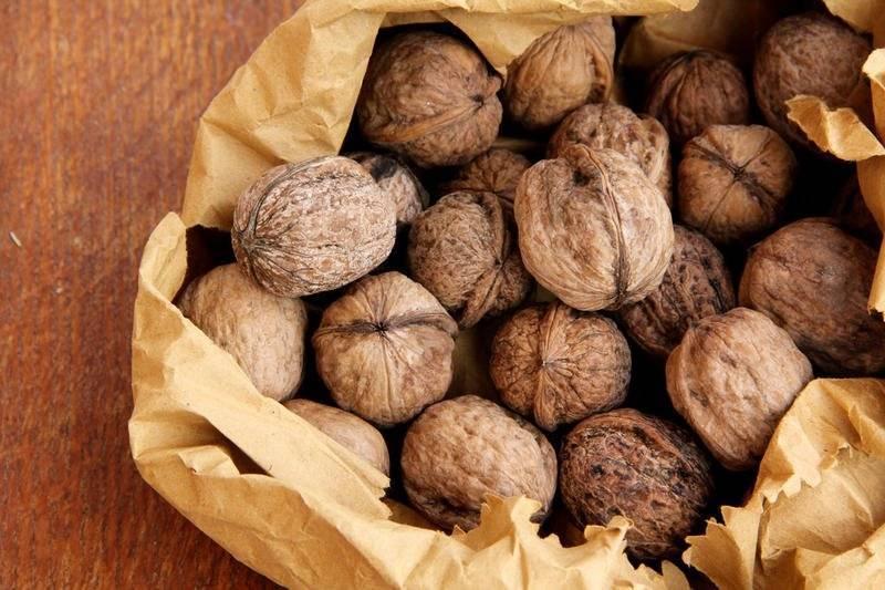 Арсланбоб: как македонский и черчилль прославили ореховый лес в кыргызстане?