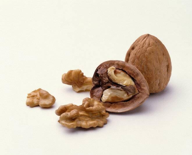 Грецкий орех: польза и вред, калорийность, полезные и лечебные свойства, противопоказания для мужчин и женщин