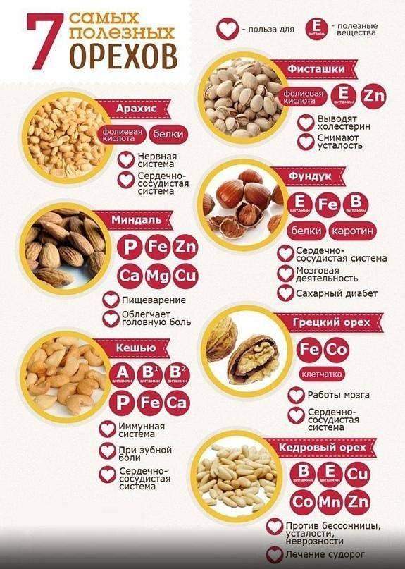 Фундук — калорийность продукта, польза и вред для организма