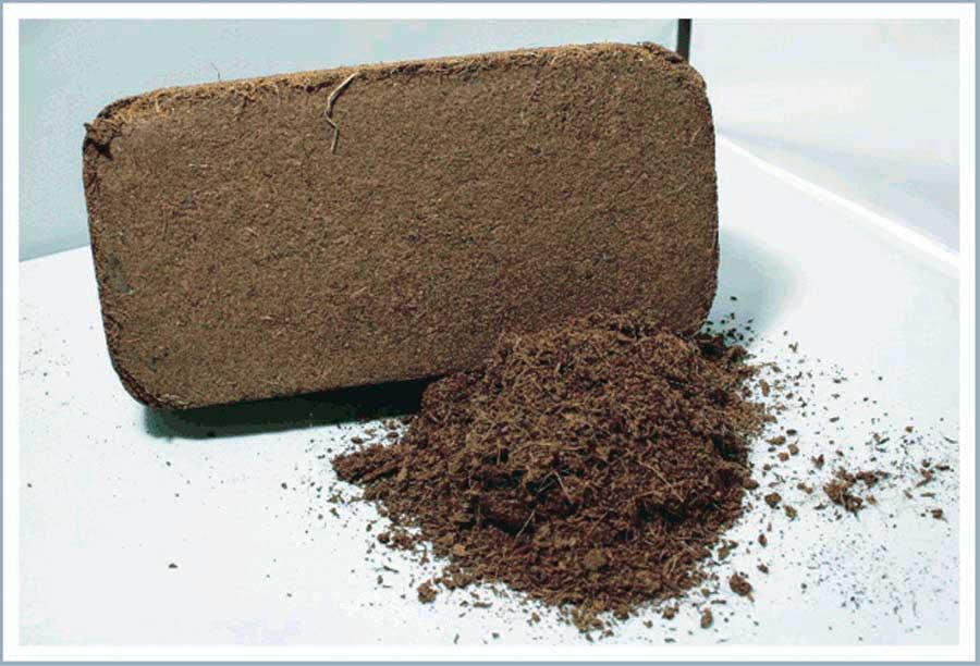 Кокосовый субстрат: состав, формы выпуска, применение для выращивания рассады и комнатных растений
