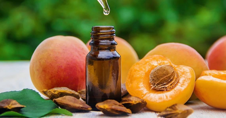 Абрикосовое масло – натуральное средство для ухода за кожей и волосами   здорова и красива