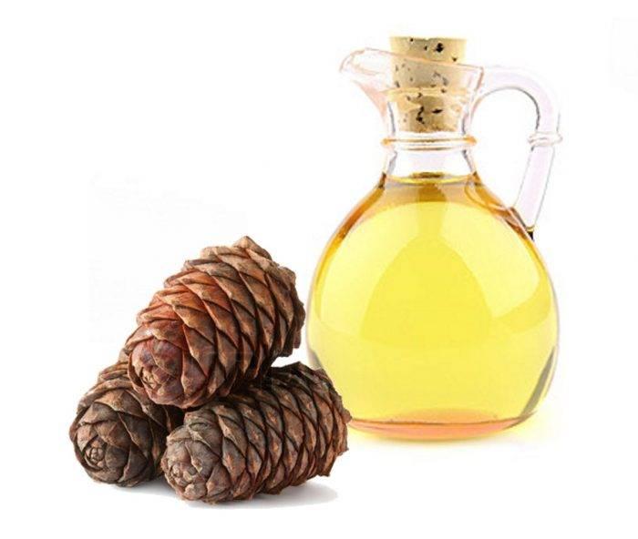 Кедровое масло: польза и применение
