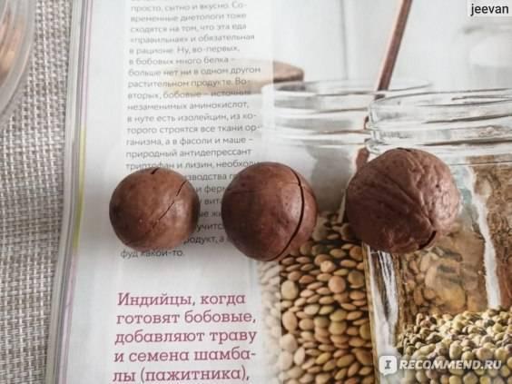 Орех макадамия: состав, калорийность, норма в день, польза и вред для организма