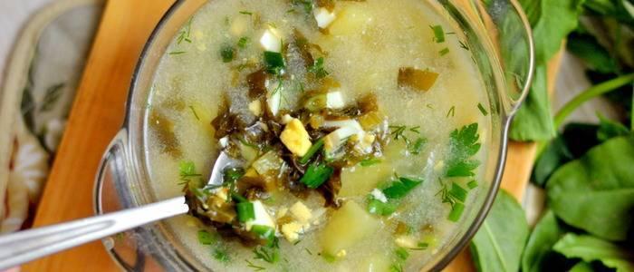 Рецепты заготовок в банках для щей на зиму: с капустой, зеленых щей