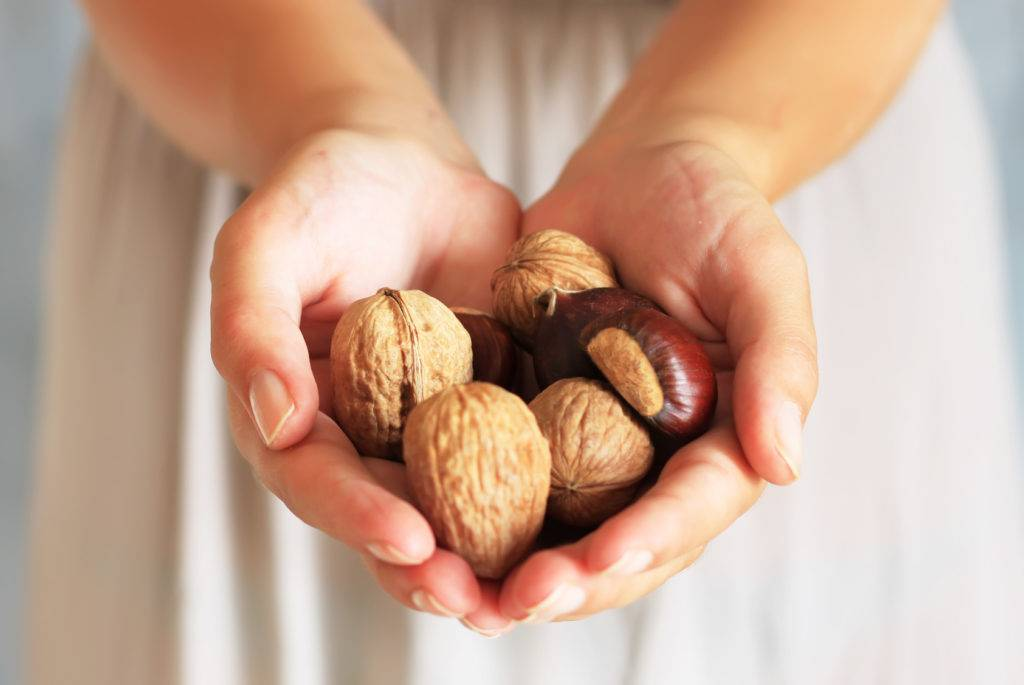 Орехи - 5 лучших сортов в вашем рационе. польза и вред