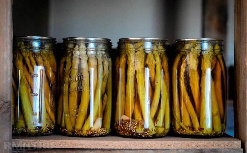 Спаржевая фасоль на зиму – 10 рецептов заготовок с пошаговыми фото